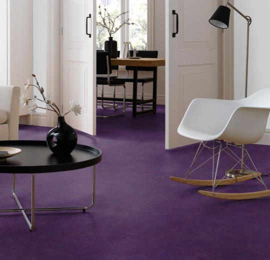 3244 Purple .