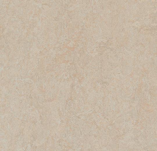 3871 Silver Birch
