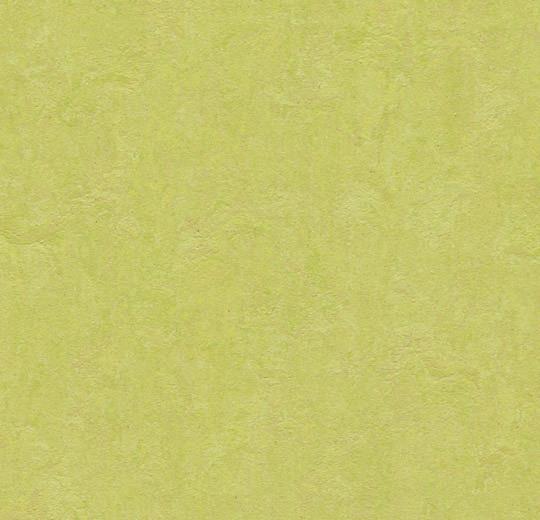 Линолеум 3885 Spring Buds