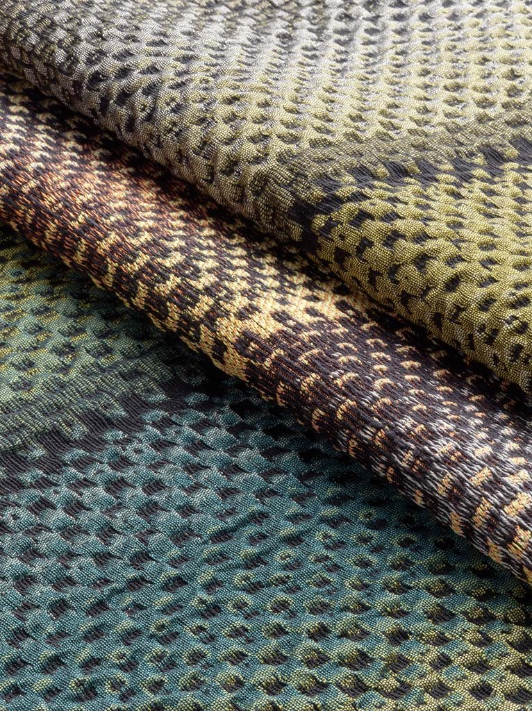 Lizard 01 02 03 Makro