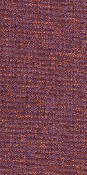 Pablo FR 06 Violet 1